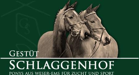 Gestüt Schlaggenhof